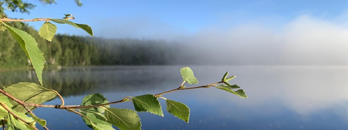 Messeforumin hiilineutraali messuosasto auttaa osaltaan säilyttämään kuvan kaltaisen puhtaan luonnon